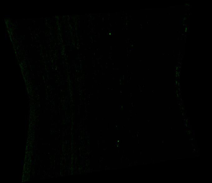 FRT00007B8F_07_IF164L