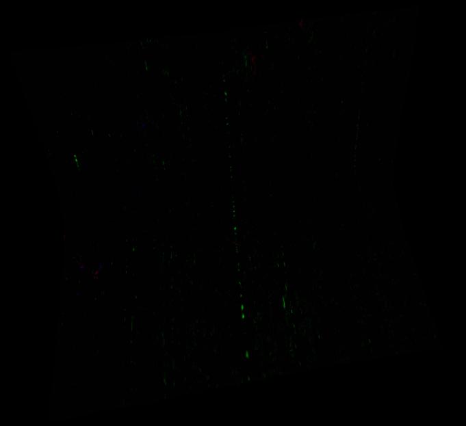 FRT00004F2F_07_IF164L