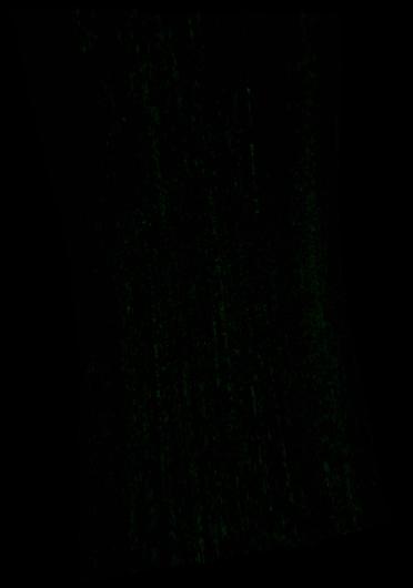 HRL0000661E_07_IF181L